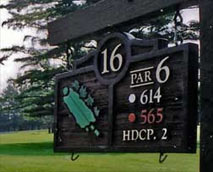 Hole 16: The Maplewood Championship Golf Course